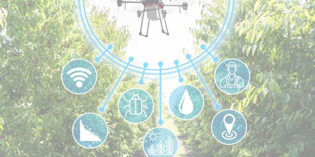 Inovação e tecnologia: qual o impacto no agronegócio?